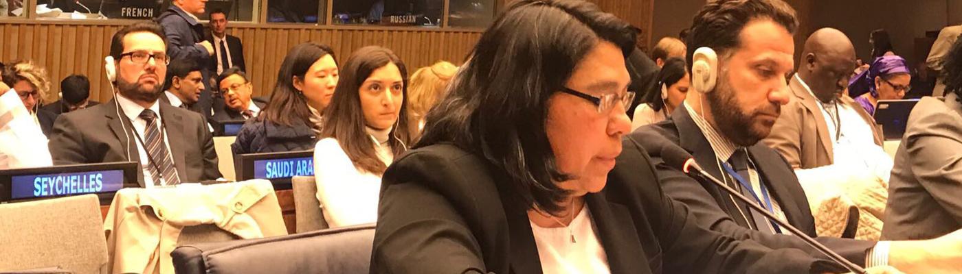 Guatemala reafirma en Naciones Unidas su compromiso con los Objetivos de Desarrollo Sostenible y sus metas